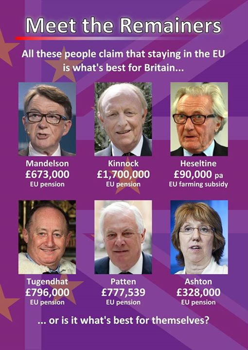 leading remoaners