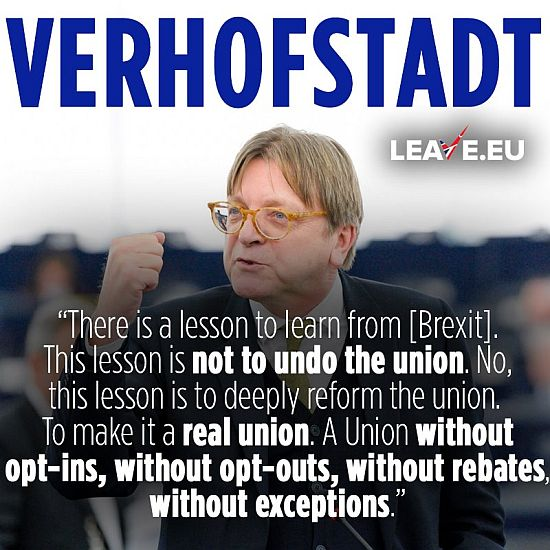 verhofstadt insane and brexit